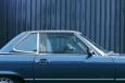 dogsincars12