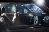 dogsincars5